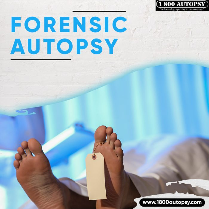 Forensic Autopsy