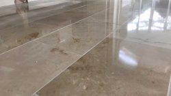 Floor Cleaning Portobello