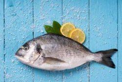 سمك طازج