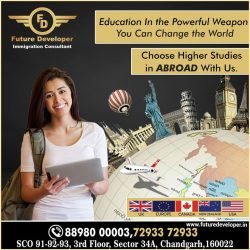 Choose The Right Country For Higher Studies Abroad