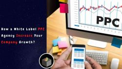 How a White label PPC Agency Work with a Company?