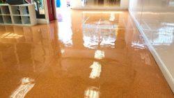 Floor Cleaning Monkstown