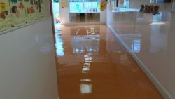 Floor Cleaning Stepaside