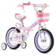 RoyalBaby Jenny Princess Girls Kids Bike 12 14 16 18 Inch, Pink EI