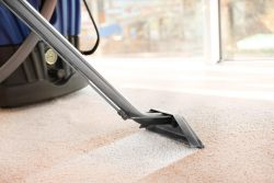 Affordable Carpet Cleaning   Boss Optima