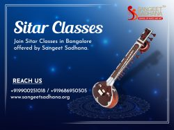 Learning musical instruments from professionals.