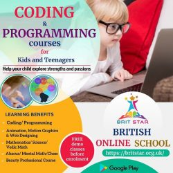 Coding and Beauty Professional Course