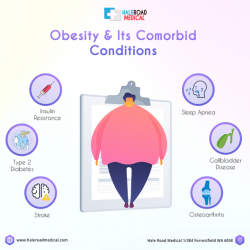 Obesity and its Treatment in Perth | Hale Road Medical