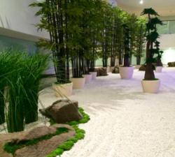 Siji Greenhouse in Dubai, UAE