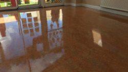 Floor Cleaning Mount Merrion