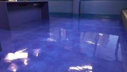 Floor Cleaning Glasnevin