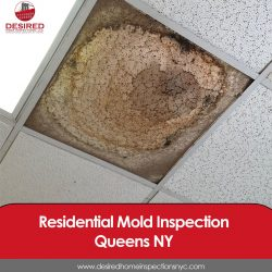 Residential Mold Inspection in Queens, NY