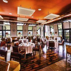 Develop Your Restaurant Business- Cindy Ughanze