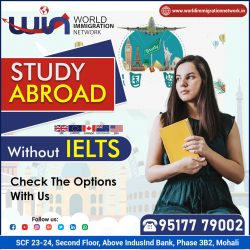 Study Abroad With / Without IELTS