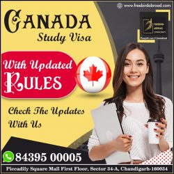 Study In Canada With Updated Rules