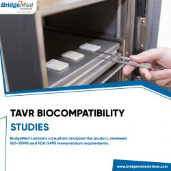 TAVR BIOCOMPATIBILITY STUDIES