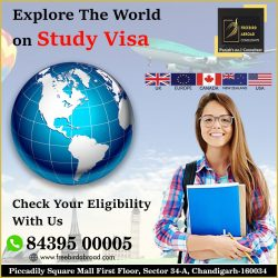 Explore The World On Study Visa -With / Without IELTS
