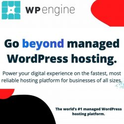 Host Your All Sizes of Business Website With WP Engine Managed WordPress Hosting