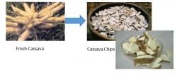 Cassava Chips Machine