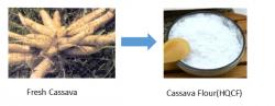 assava Flour Machine