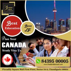 Plan Canada Study Visa