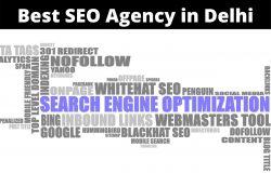 SEO Agency in Delhi
