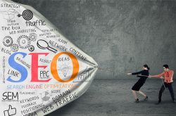 Hire The Best SEO Company in India – Digital Web Services