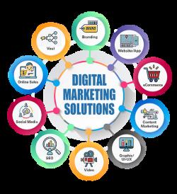 Gigi Catalin Neculai   Digital Marketing Expert