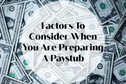 Factors To Consider When You Are Preparing A Paystub