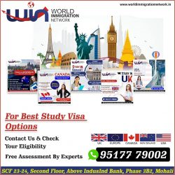 Best Study Visa Options