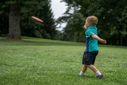 3 Successful Characteristics that make Disc Golf Players Become Creative, Interpersonal, and Social