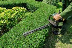 Lawn Mowing Essendon West