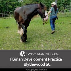 Human Development Practices Blythewood SC