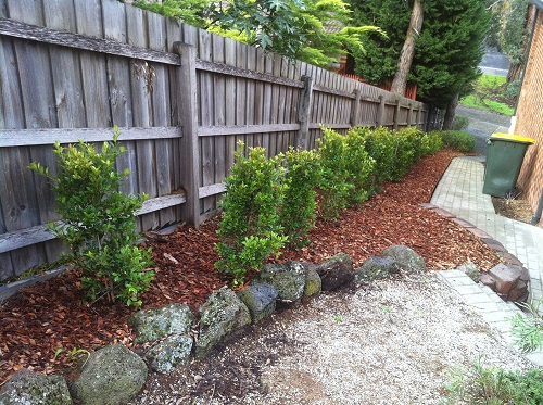 Get Lawn Mowing Services In Greensborough At Affordable Price.
