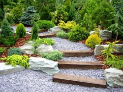 Why Do You Need the Services of a Professional Landscape Designer?