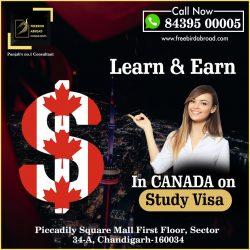 Learn & Earn In Canada On Study Visa