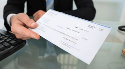 How to pick the best pay stub service provider?