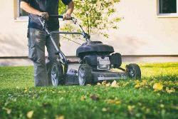Get Lawn Mowing Services In Airport West.