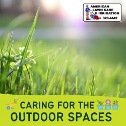 Beautiful Lawn Care Service At Your Doorstep