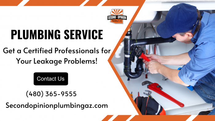 Get Hassle-Free Plumbing Services!