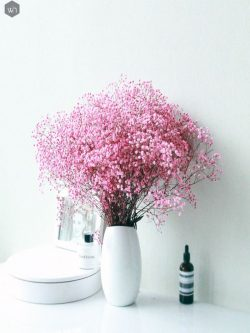 Buy Dried Flowers Online In India | Home Decor | Whispering Homes