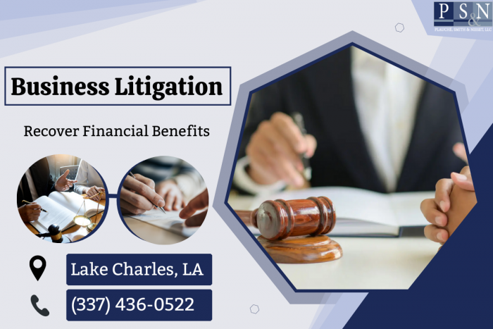 Professional Commercial Lawyers