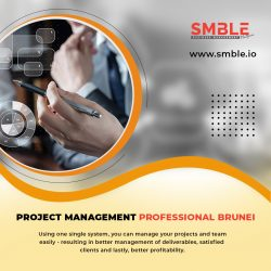 Project Management Professional Brunei – Smble.io