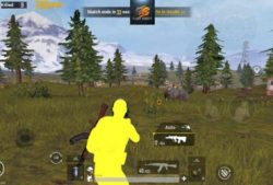 how to spectate in Pubg mobile emulator