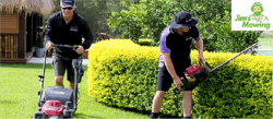 Get Lawn Mowing Services In Macleod At Affordable Price.