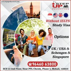 Settle The Best Study Visa Option With US
