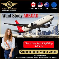 Studies Abroad With / Without IELTS