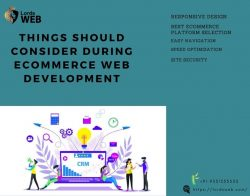 Things should consider during ecommerce web development
