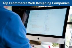 Top Ecommerce Web Designing Companies