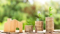 Jamie Goldstein From Boca Raton | Experienced Investor